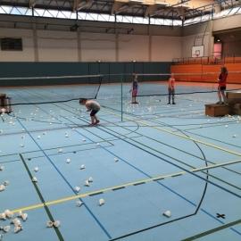 2017-08-07 Ferienpass Badminton (2) Zirkel