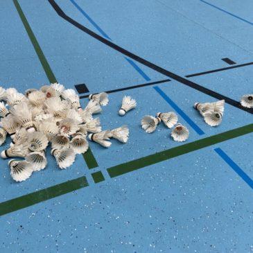 Badminton spielen als Nicht-Kontaktsportart
